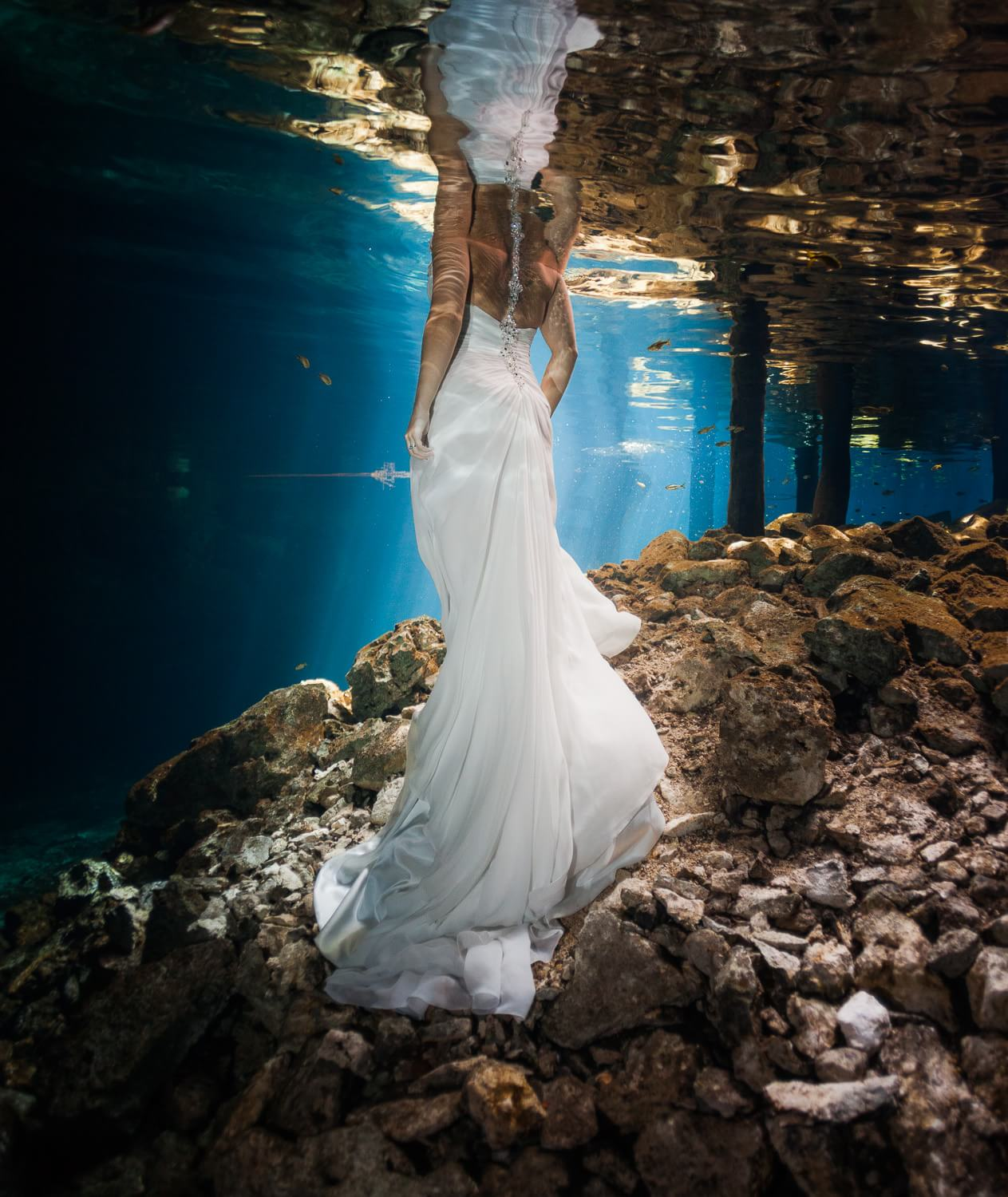 Back of dress in underwater Trash the dress