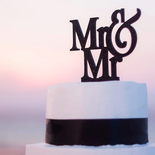 Mr. and Mr Cake topper