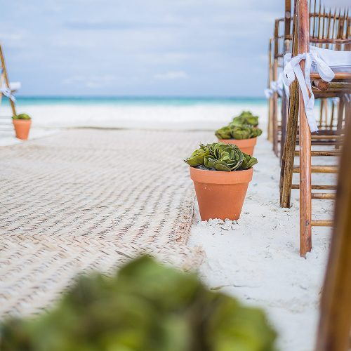 Close up of plants along aisle at wedding ceremony in Tulum