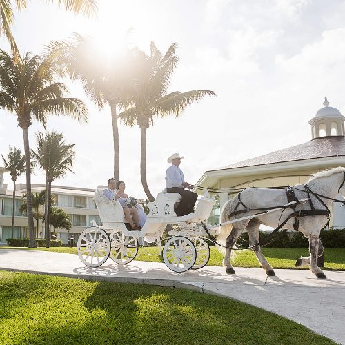 Bride showing up on horse and carriage at Moon Palace Cancun wedding