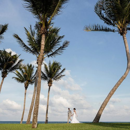 Bride and groom walking through palm trees at Moon Palace Cancun wedding