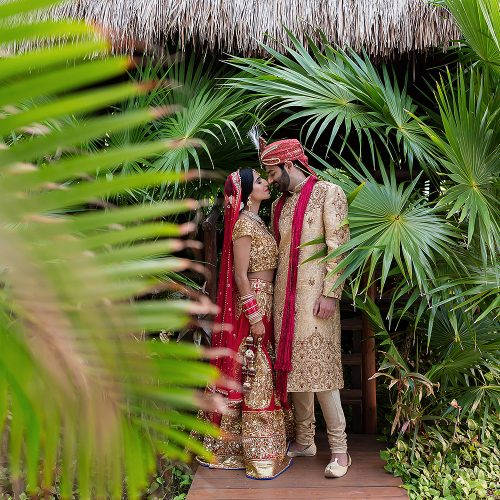 Indian bride and groom in Palm trees