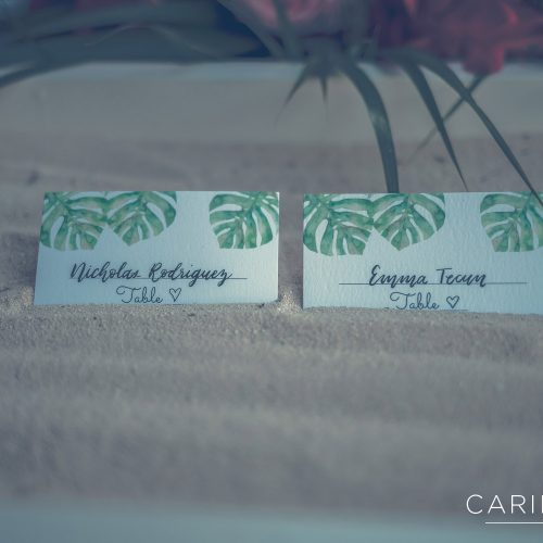 Close up of bride and grooms escort cards.